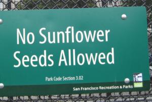 The Best Sunflower Seeds