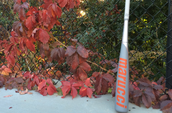 Best Fall Ball Baseball Bat