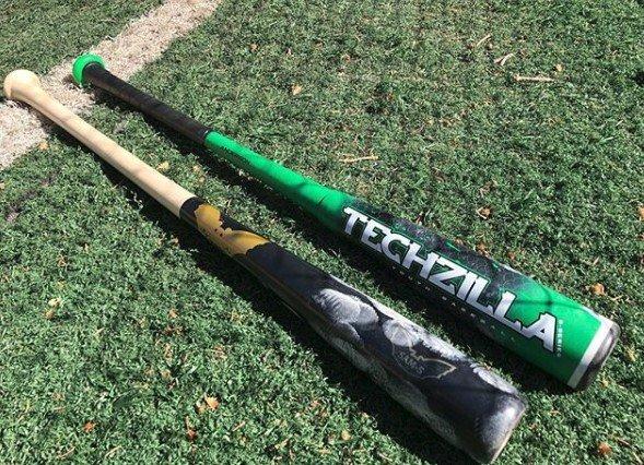 Wood vs USA Bat